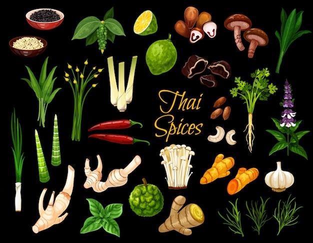 Spezie tailandesi, erbe e condimenti di cottura Vettore Premium