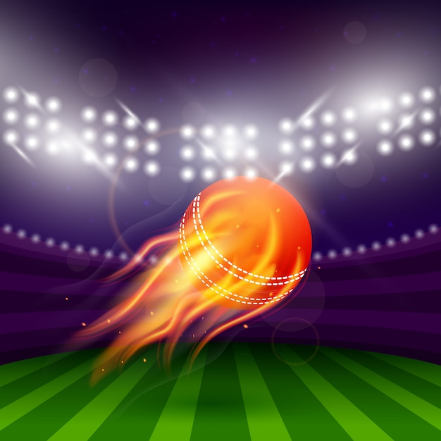 Stadium of cricket night Vettore gratuito