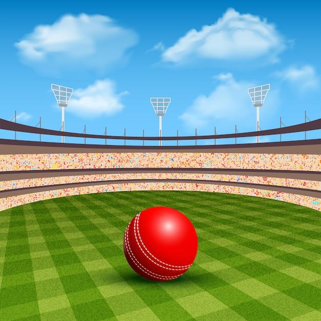 Stadium of cricket Vettore gratuito