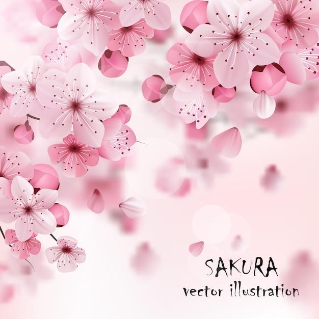 Stampa cherry sakura rosa Vettore gratuito