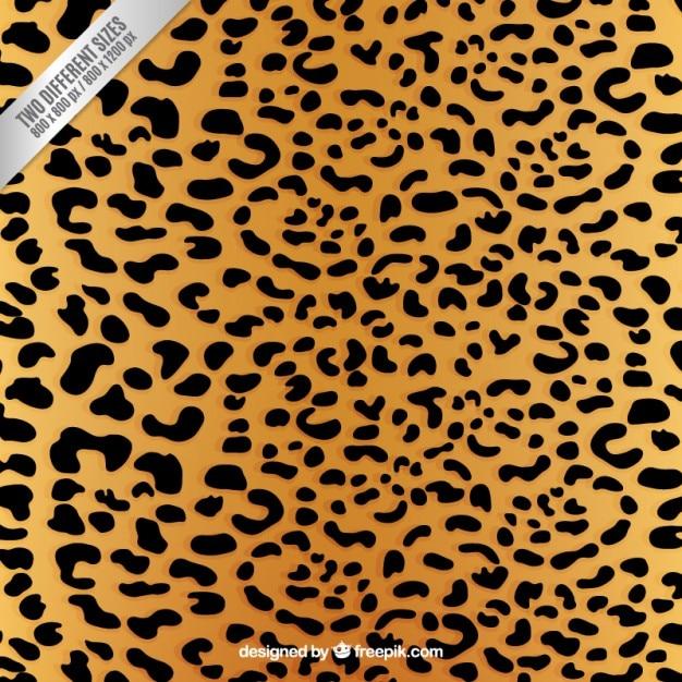 Stampa leopardo sfondo Vettore gratuito