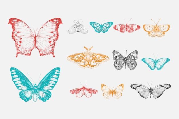 Stile di disegno illustrazione della collezione di farfalle Vettore gratuito