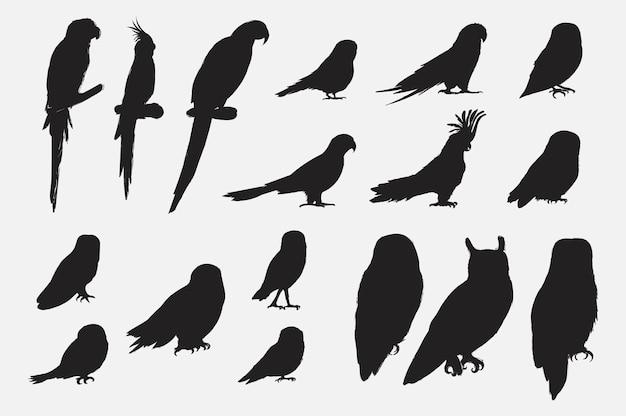 Stile di disegno illustrazione della collezione di uccelli pappagallo Vettore Premium
