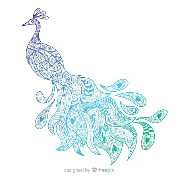 Stile disegnato bello pavone in mano Vettore gratuito