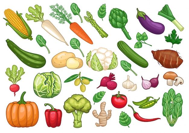 Stock vector set di illustrazione grafica di oggetti vegetali Vettore Premium