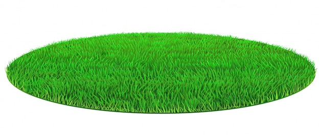 Struttura ovale verde dell'erba del prato inglese di vettore Vettore Premium
