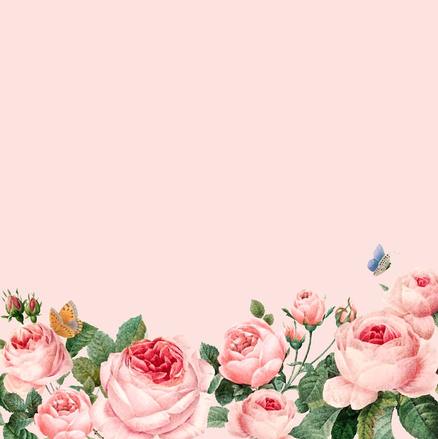 Struttura rosa disegnata a mano delle rose sul vettore rosa del fondo di pastello Vettore gratuito