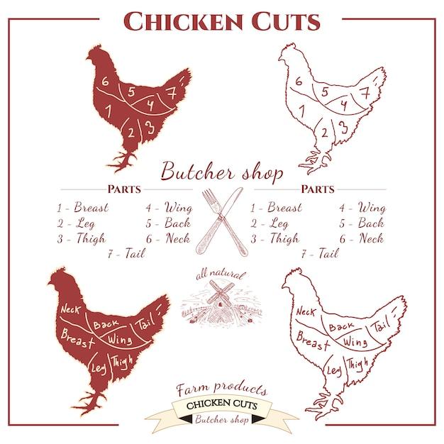 Tagli di pollo Vettore Premium