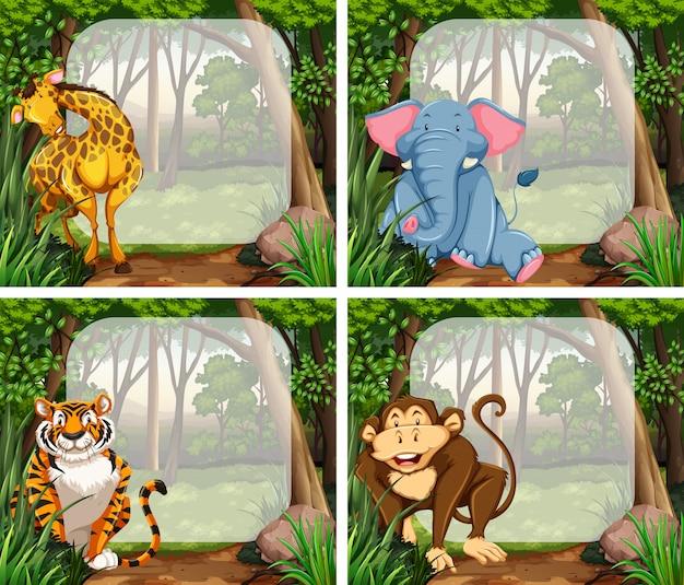 Telaio con animali selvatici nella giungla Vettore gratuito