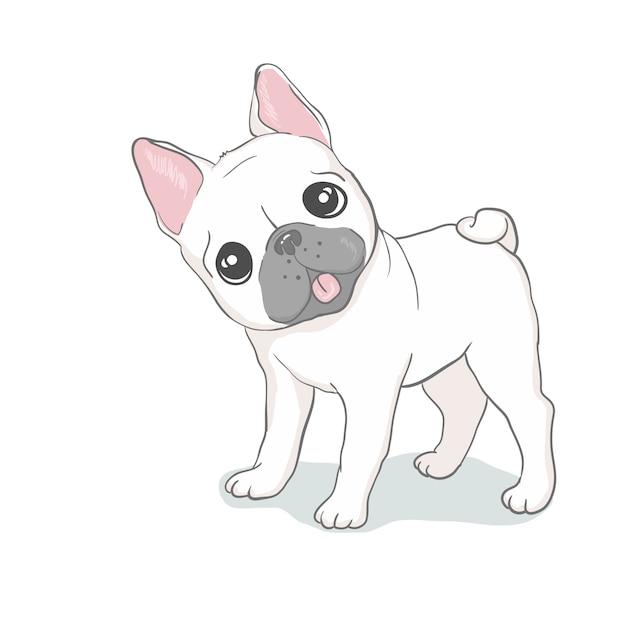 Testa del bulldog francese isolata. illustrazione vettoriale Vettore Premium