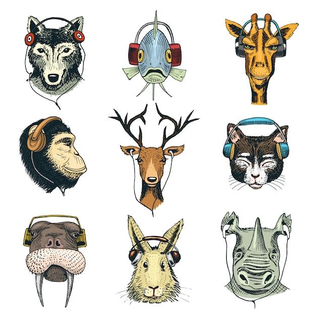 Testa di animale in cuffie carattere animalesco in auricolari o cuffia ascoltando musica illustrazione set di cartoon wild dj in copricapo o auricolari isolati Vettore Premium