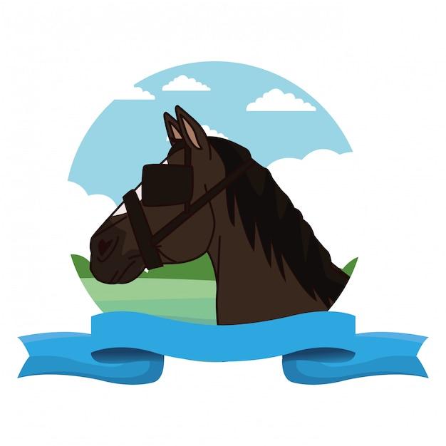 Testa di cavallo con cartoon berretto Vettore Premium