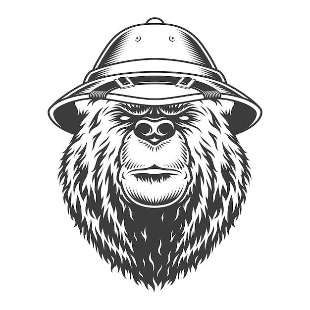 Testa di orso explorer in cappello da safari Vettore gratuito