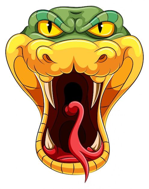 Testa di serpente con una lingua lunga biforcuta Vettore Premium