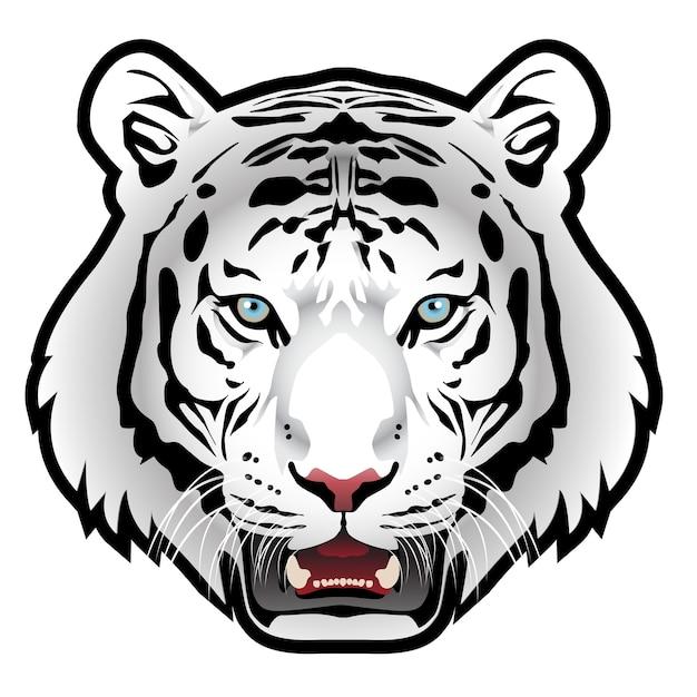 √ 100 Altro Sfondi Foto Di Tigri - Immagini di sfondo gratis