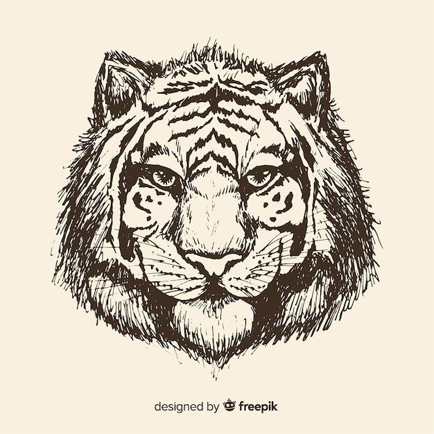 Testa di tigre Vettore gratuito