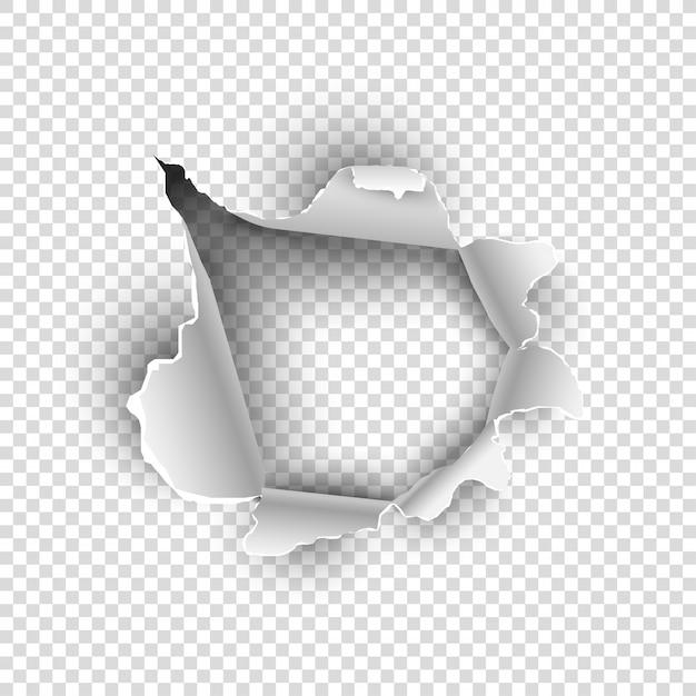 Texture di carta o foglio strappata su sfondo trasparente. Vettore Premium