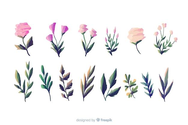 Tipi di fogliame e flora su sfondo bianco Vettore gratuito