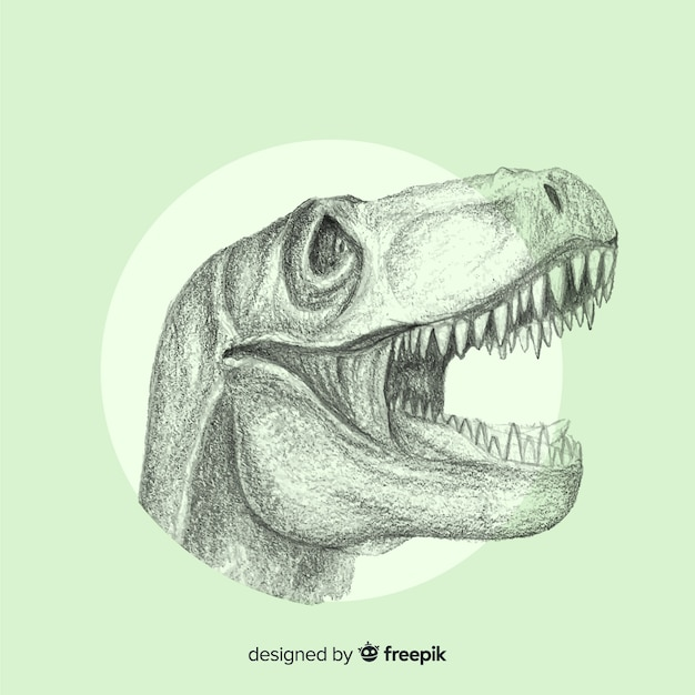 Tirannosauro rex Vettore gratuito