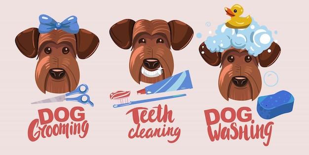 Toelettatura per cani. denti che si schiariscono, lavaggio del cane. Vettore Premium