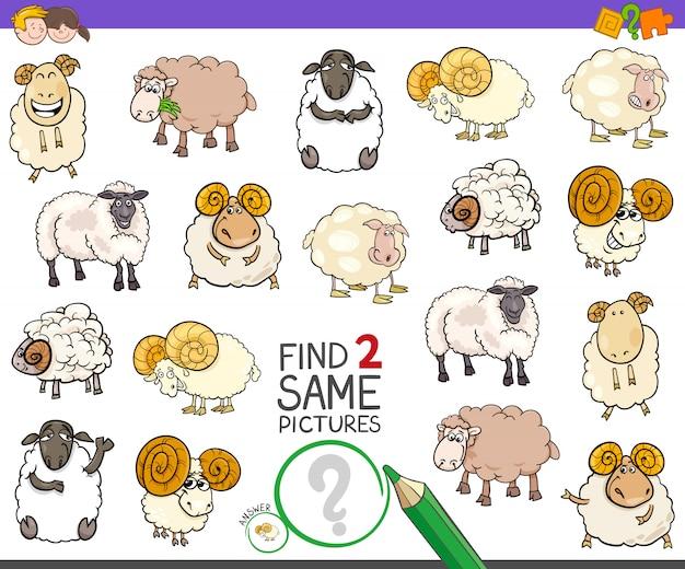Trova il gioco di due personaggi di pecora per bambini Vettore Premium