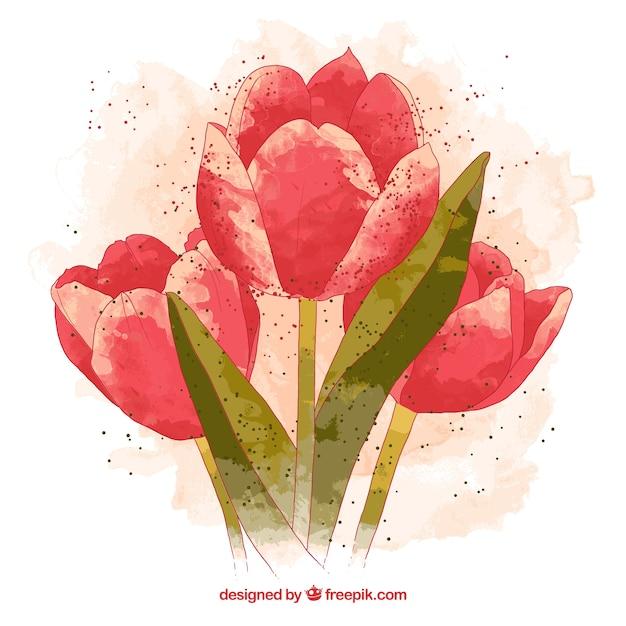 immagini di tulipani da scaricare torrent