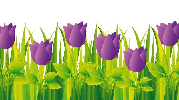 Tulipani viola con erba Vettore Premium