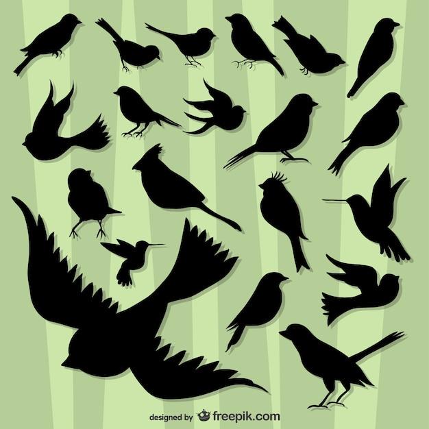 Uccelli che volano silhouette confezione Vettore gratuito