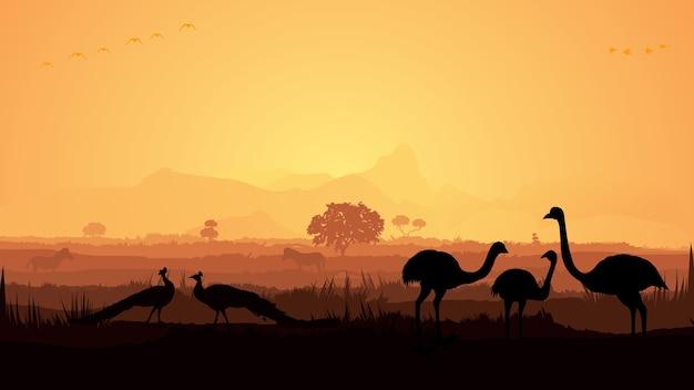 Uccelli della giungla Vettore Premium