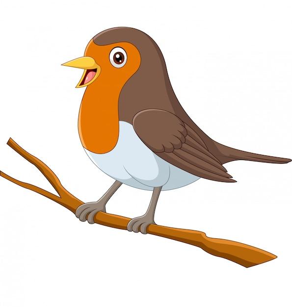 Uccello del pettirosso del fumetto che si siede su un ramo di albero Vettore Premium