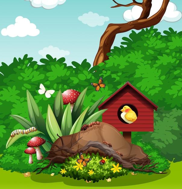 Uccello e insetti in giardino Vettore gratuito