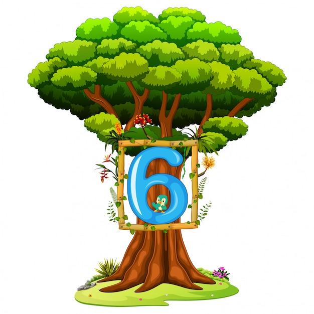 Un albero con una figura numero sei su uno sfondo bianco Vettore Premium