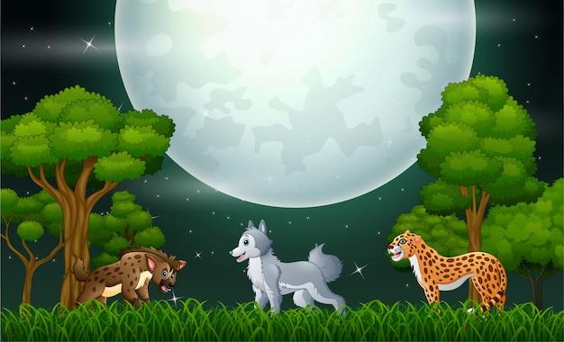 Un altro animale nella giungla di notte Vettore Premium