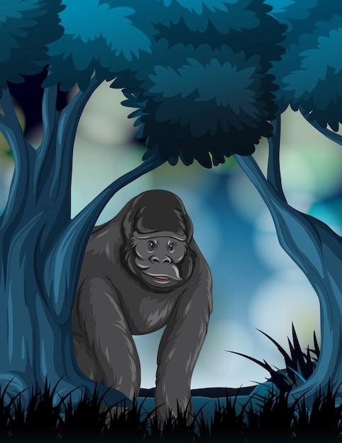 Un gorilla nella foresta Vettore gratuito