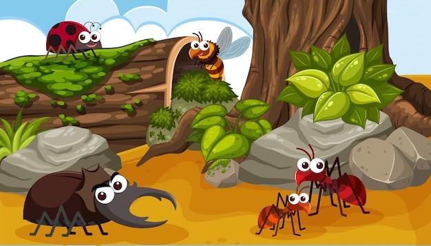 Un gruppo di insetti felici nella foresta Vettore Premium