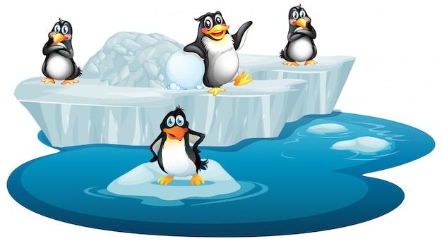 Un'immagine isolata di quattro pinguini Vettore gratuito