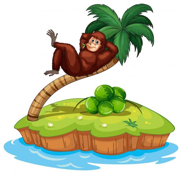 Un'isola con un gorilla Vettore Premium