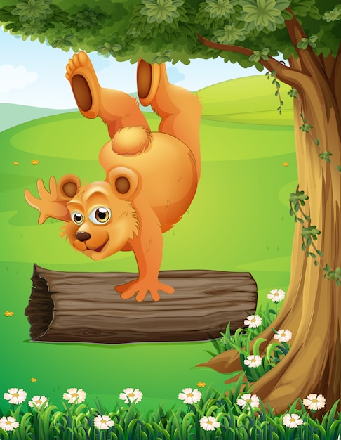 Un orso in cima alla collina che gioca vicino all'albero Vettore gratuito