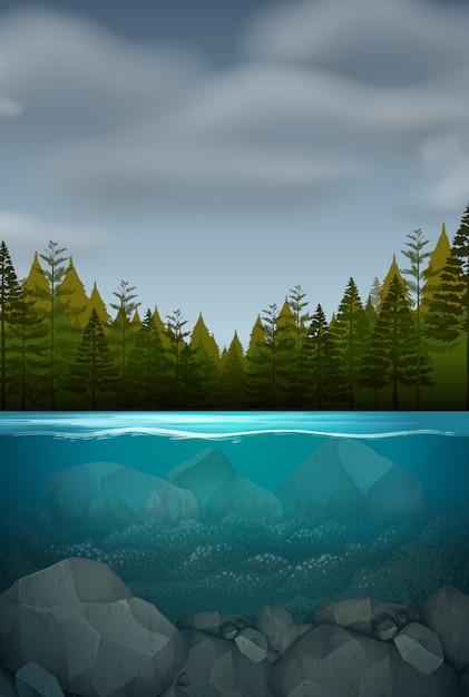 Un paesaggio naturale sottomarino Vettore gratuito