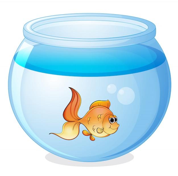 Un pesce e una ciotola Vettore gratuito