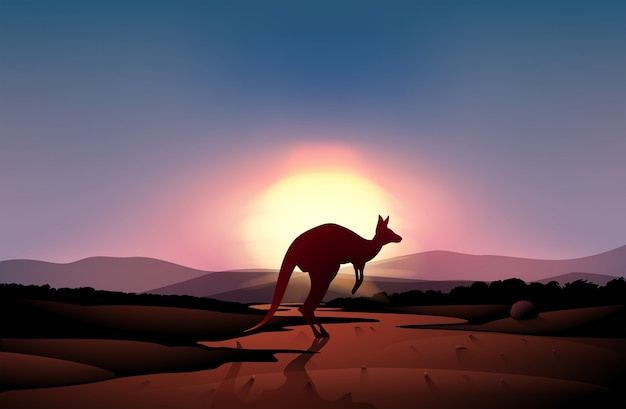 Un tramonto nel deserto con un canguro Vettore Premium
