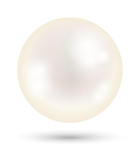 Una Perla Bianca Brillante Su Uno Sfondo Bianco Scaricare Vettori