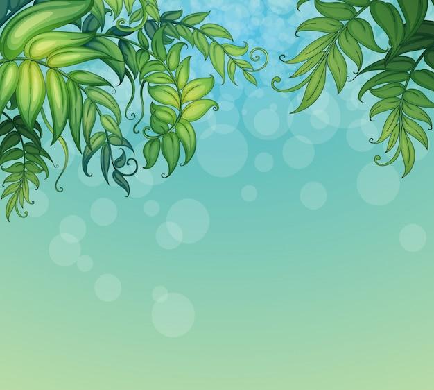 Una priorità bassa blu con le piante frondose verdi Vettore gratuito
