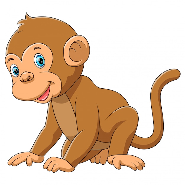 Una scimmia carina con sfondo bianco Vettore Premium