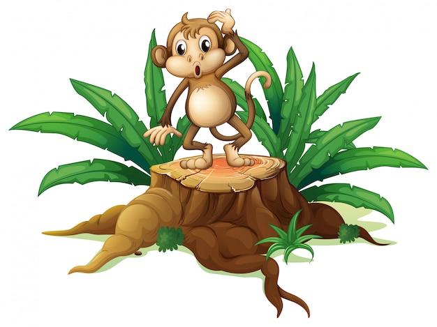 Una scimmia in piedi sul moncone con foglie Vettore gratuito