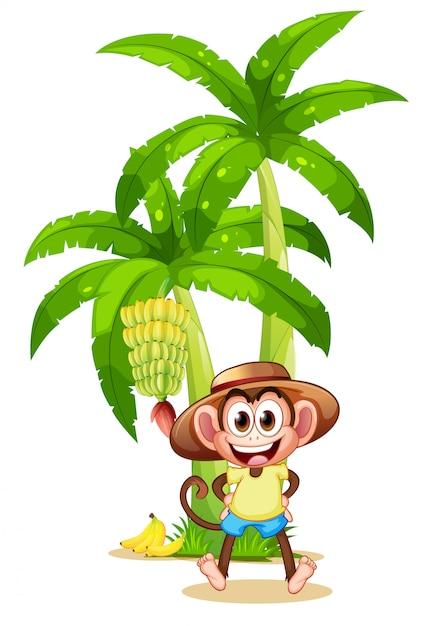 Una scimmia molto felice vicino alla pianta di banana Vettore gratuito