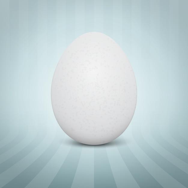 Uovo bianco realistico Vettore gratuito