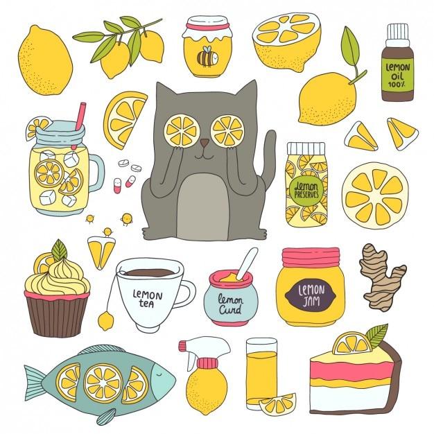 Usi limone differenti Vettore gratuito