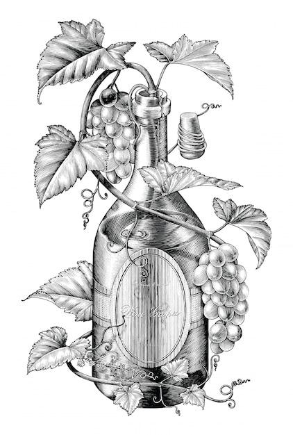 Uva che torce in clipart in bianco e nero dell'illustrazione della bottiglia di vino, il concetto della fascia degli acini d'uva Vettore Premium