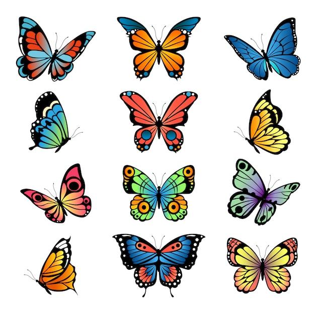 Varie farfalle di cartone animato. impostare illustrazioni farfalle Vettore Premium